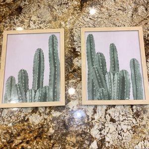cactus frames